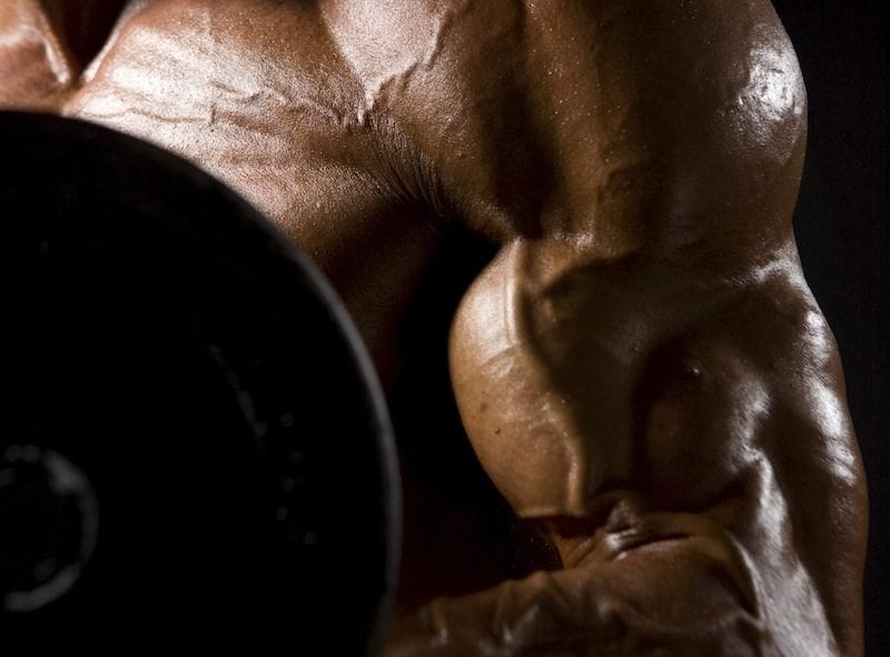 How to gain muscle mass? Proven muscle building tips