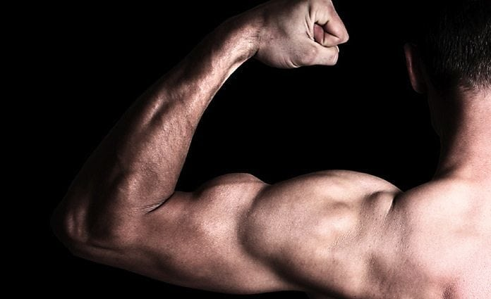 Low testosterone affect muscle growth