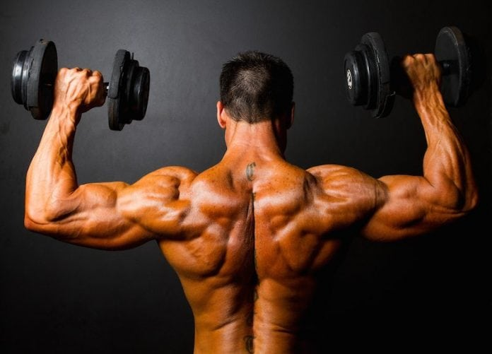 Bodybuilding basics
