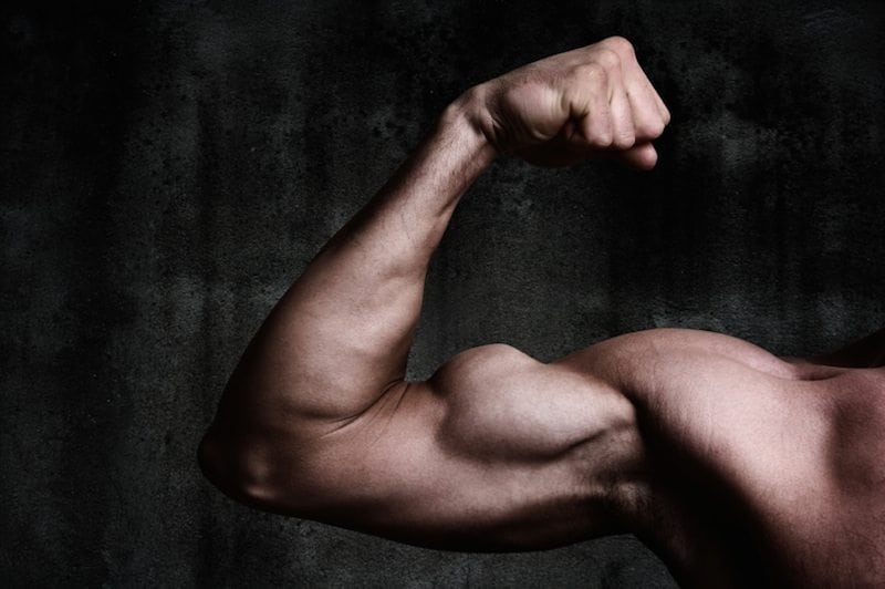 How does muscle memory work?