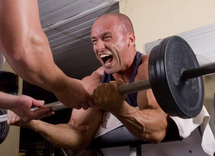 Get big arms fast