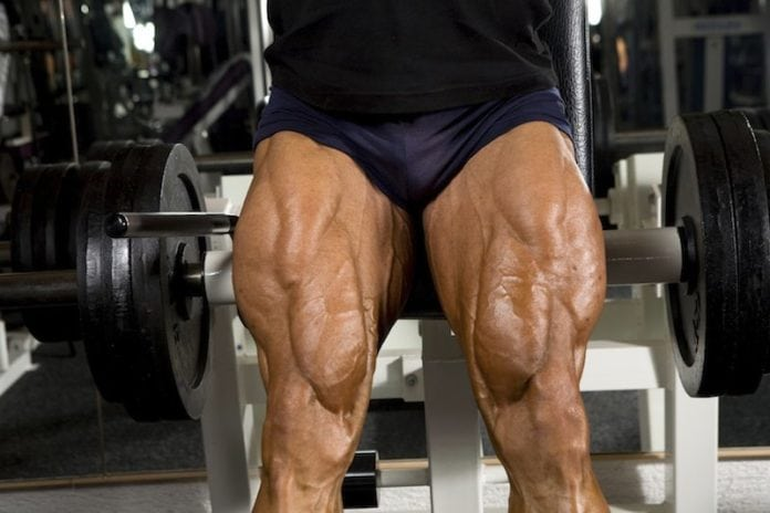 Train your legs