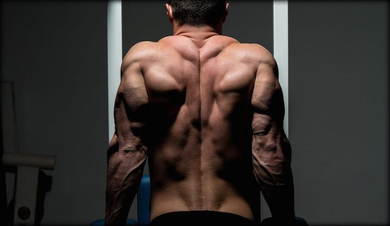 How testosterone can aid muscle building