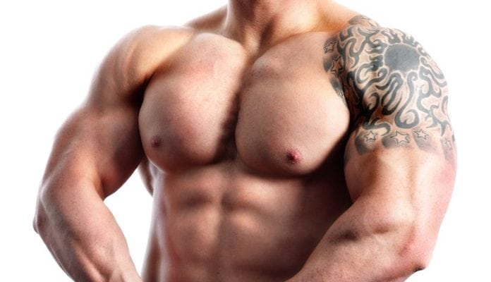 Muscle Building Body Types