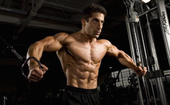 Muscle Building Facts