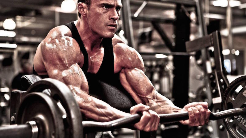 Create a Daily Routine for Muscle Gains