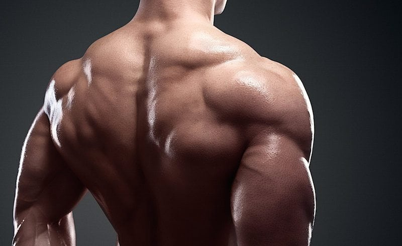 Build a Bigger Back Without Deadlifts