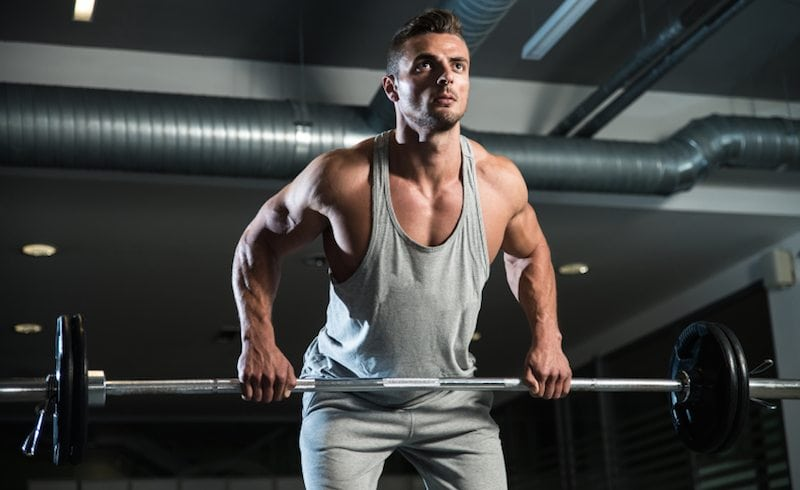 Which Muscle Groups Grow the Fastest?
