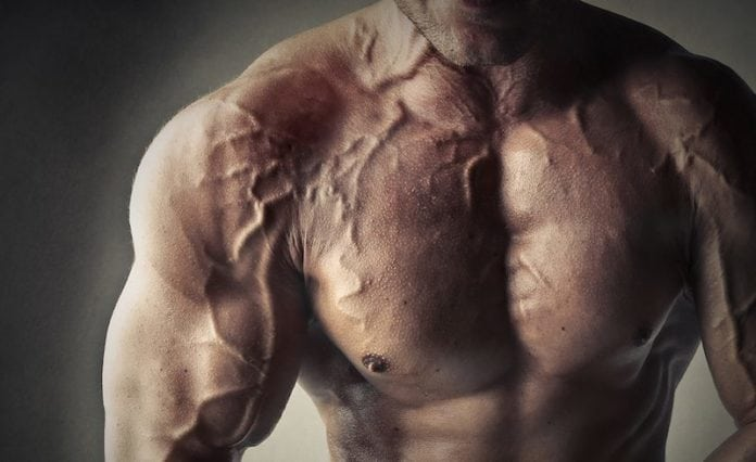 Increase Vascularity
