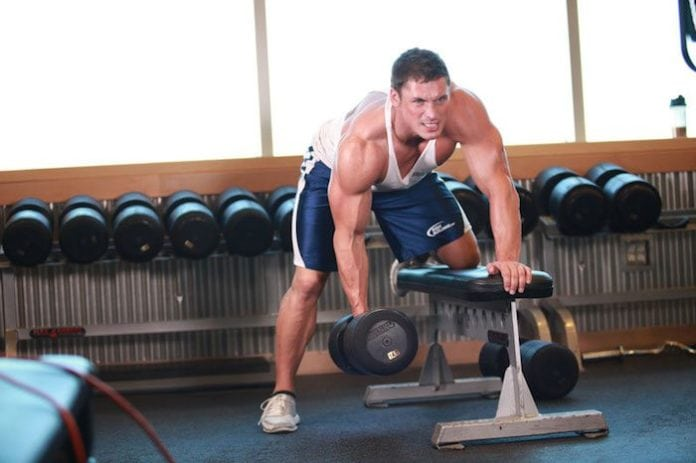 Creatine Increase Muscle Size