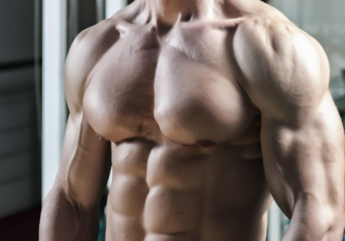 Gain Muscle as a Vegetarian