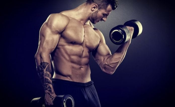 Essential bodybuilding equipment
