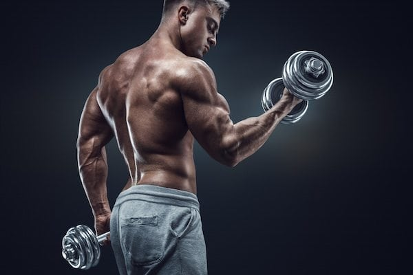 Super Foods for Muscle Gains