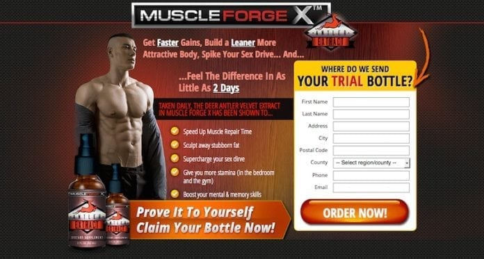 Muscle Forge X