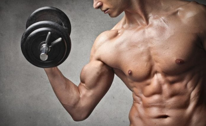 Build Muscle as a hard-gainer
