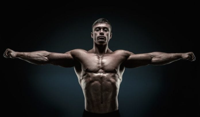 Rules of Muscle Building
