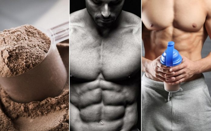 Protein Powder for Muscle Gain