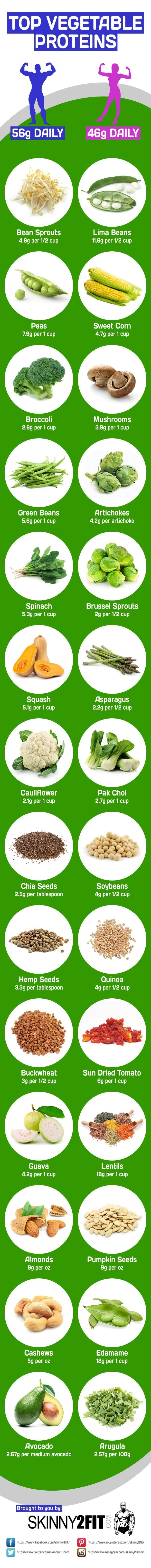 Top Vegetable Proteins