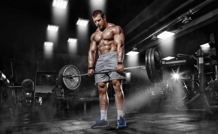 What kind of lifter are you?