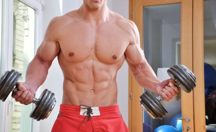 Consistent Muscle Gains
