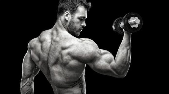 Gain Mass as a Hardgainer
